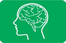 Reabilitação Intelectual